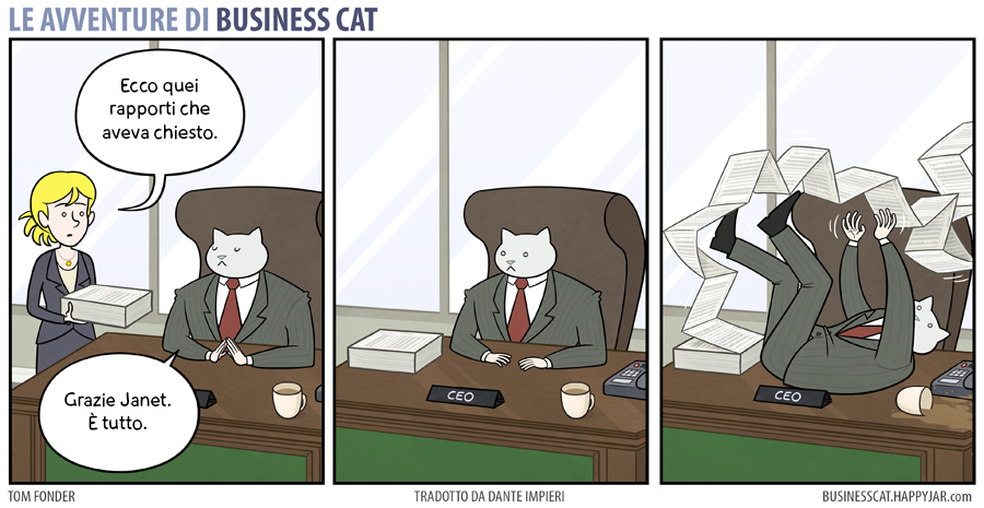 Business Cat Rapporti