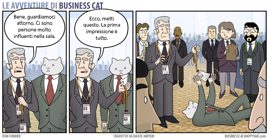 Business Cat Impressioni