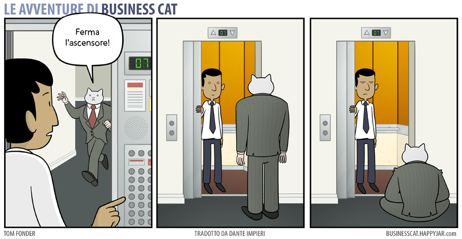 Business Cat Elevator